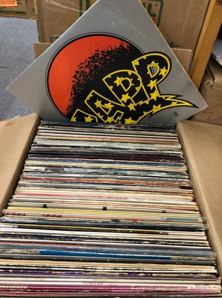 special-record-flea-at-hoofit-19-06-001